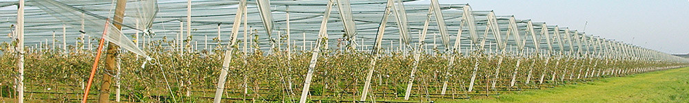 Fruit Security Hagelschutzsysteme